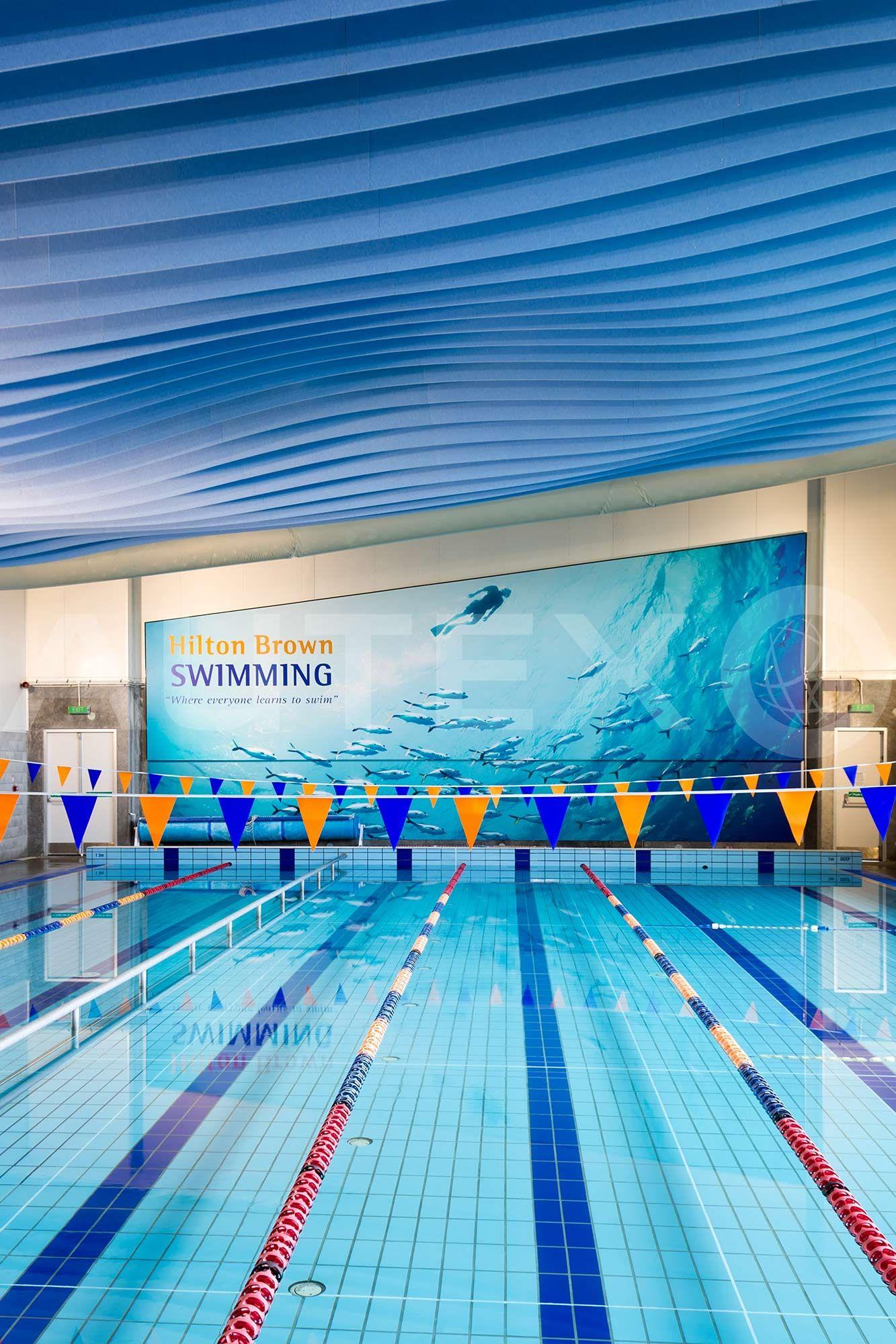 Autex Acoustics Frontier Modular Acoustic Ceiling System Hilton Brown Swim School Auckland Nz Custom Design Swim School Ceiling System Swimming Times