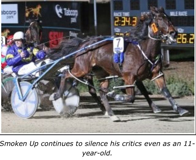 """Lance says """"Trigger"""" would still rather be at the track!"""