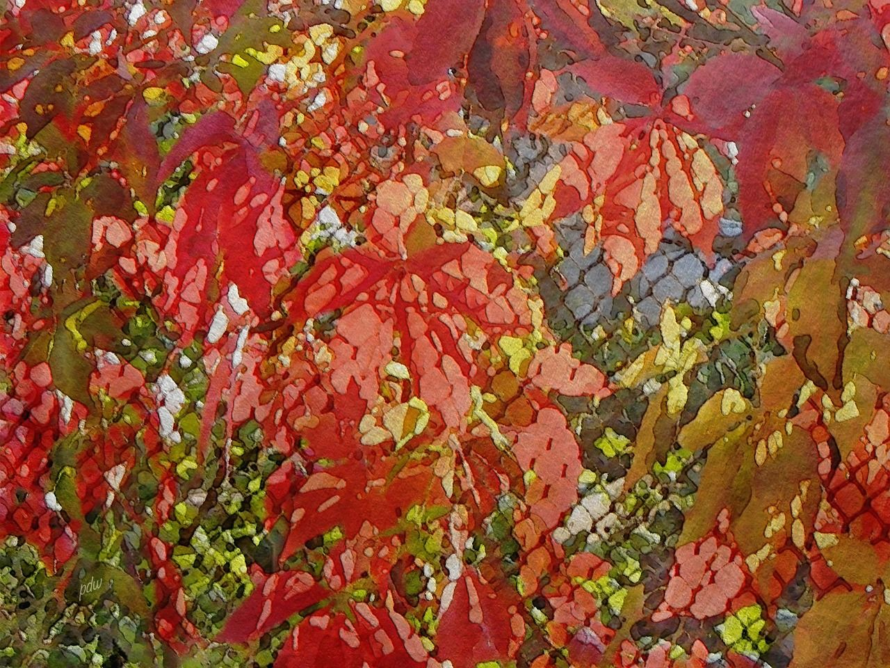 Light Play on Red Leaves on a Wire Fence 2 | Original Art ...