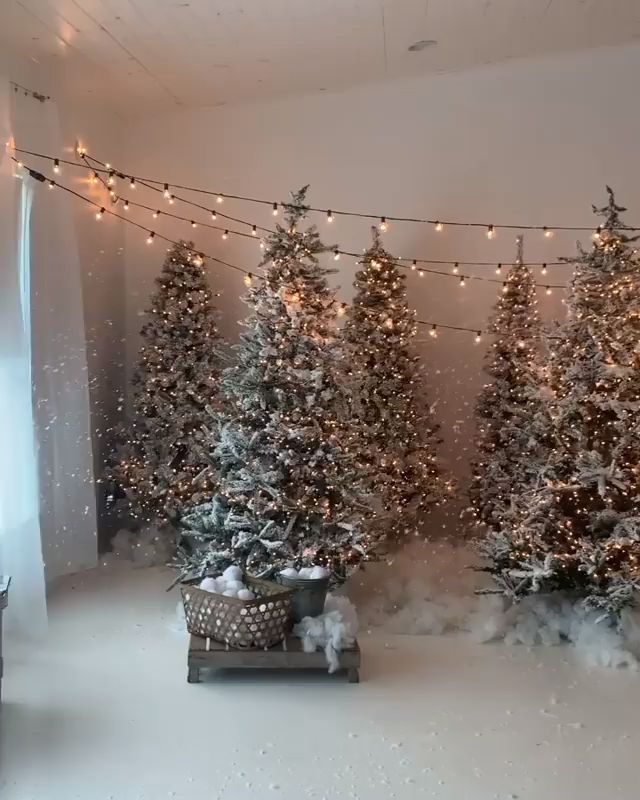 30+ Beautiful Christmas Tree Decorating Ideas For