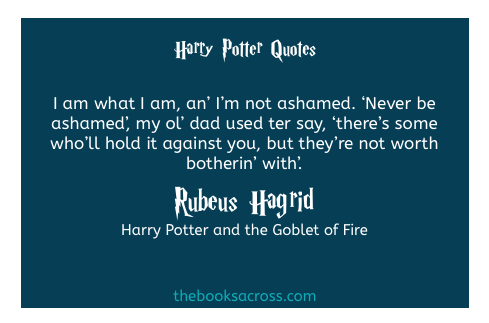 46 Magical Quotes From Harry Potter The Books Across Harry Potter Quotes Magical Quotes Harry Potter