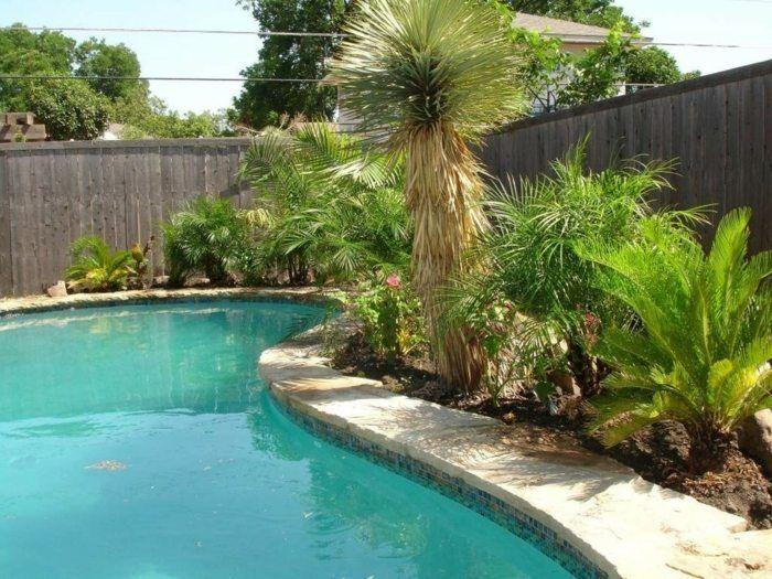 am nagement jardin avec une touche d 39 exotisme 50 photos. Black Bedroom Furniture Sets. Home Design Ideas
