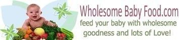 Wholesome Baby Food (DIY Baby Food) #brilliant