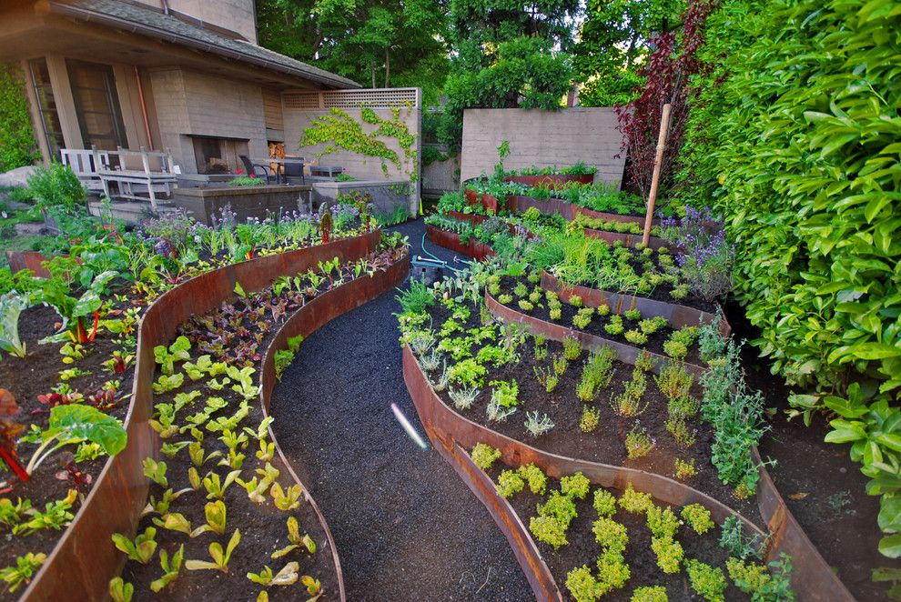 Raised Garden Bed Ideas Vegetables The Gardening