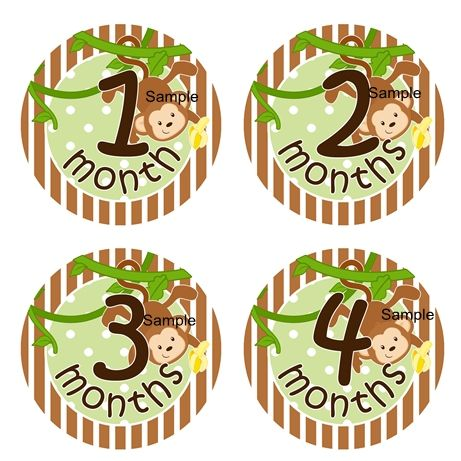 Boy Monkey Monthly Stickers | Baby month stickers, Baby ...