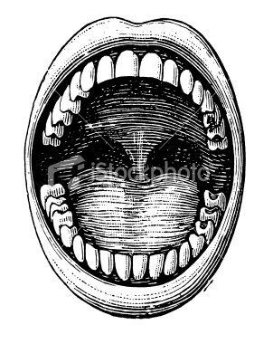 Antique Medical Illustration Depicting Open Mouth And Teeth Clip Art Vintage Teeth Illustration Moon Stars Art