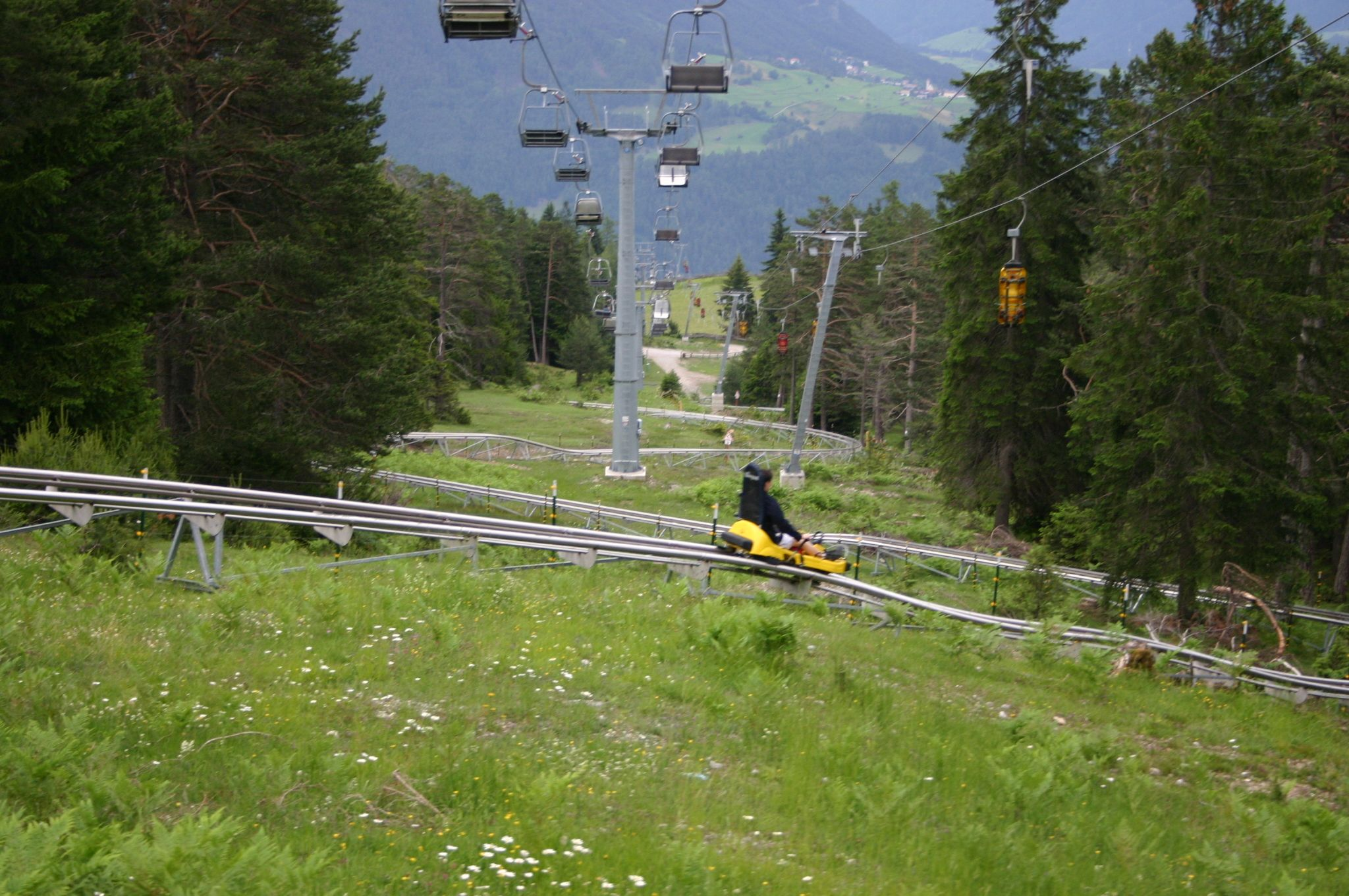 I want to ride an alpine coaster!