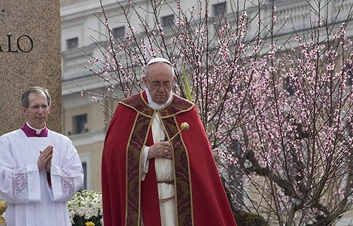 Pope+Francis/Palm+Sunday | Pope Francis celebrates Palm Sunday Mass on March 24, 2013 in St ...