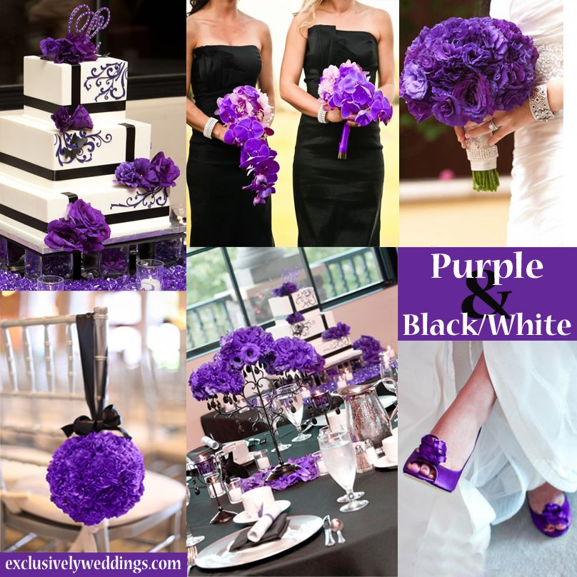 Purple Black White Purple Wedding Theme Wedding Colors
