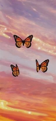 'Butterfly Sunset Aesthetic' iPhone 11 - Soft by trajeado14