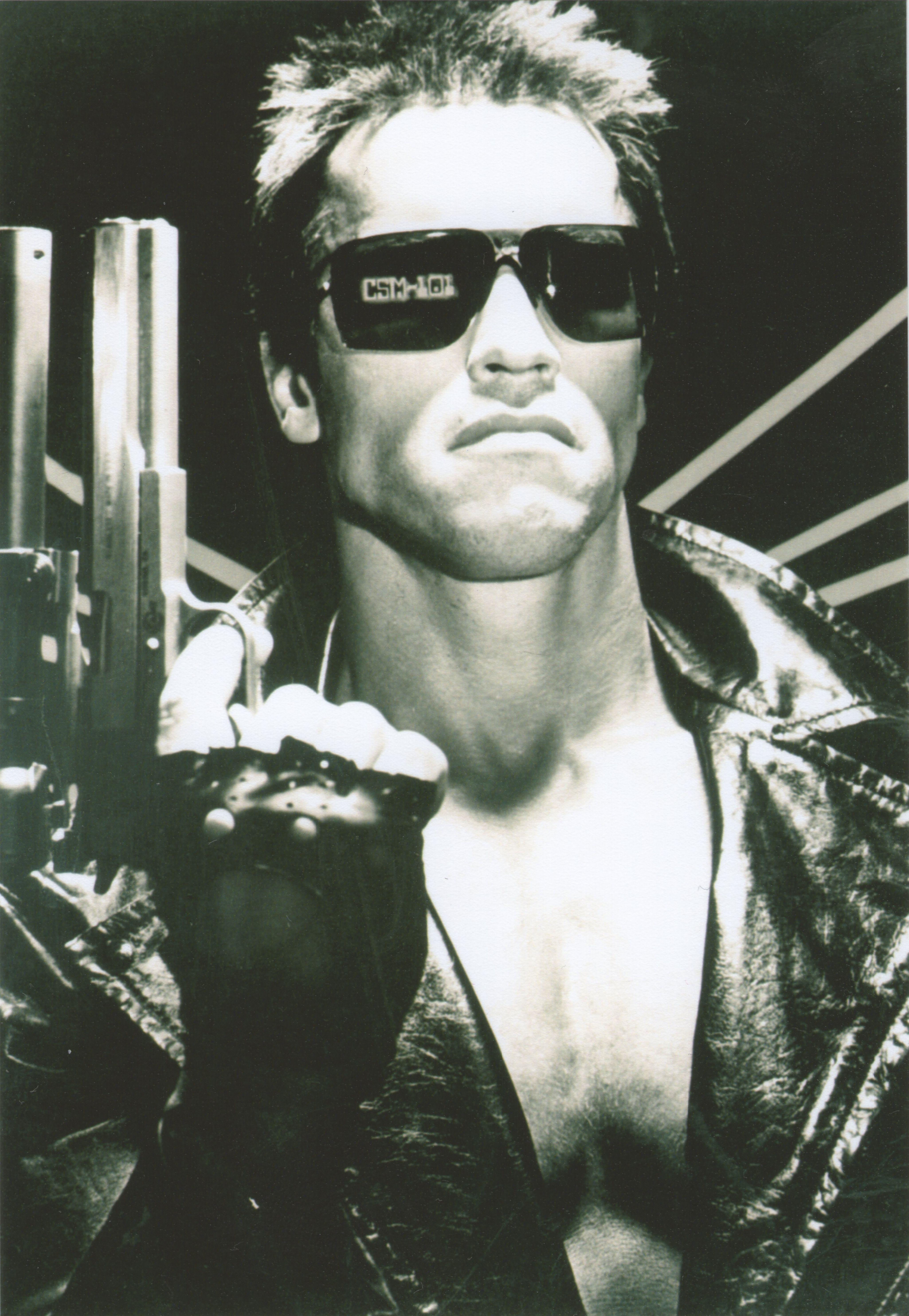 The Terminator (1984) Arnold Schwarzenegger   The Terminator