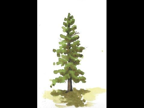 Painting Evergreen Trees In Watercolor Michael David Sorensen