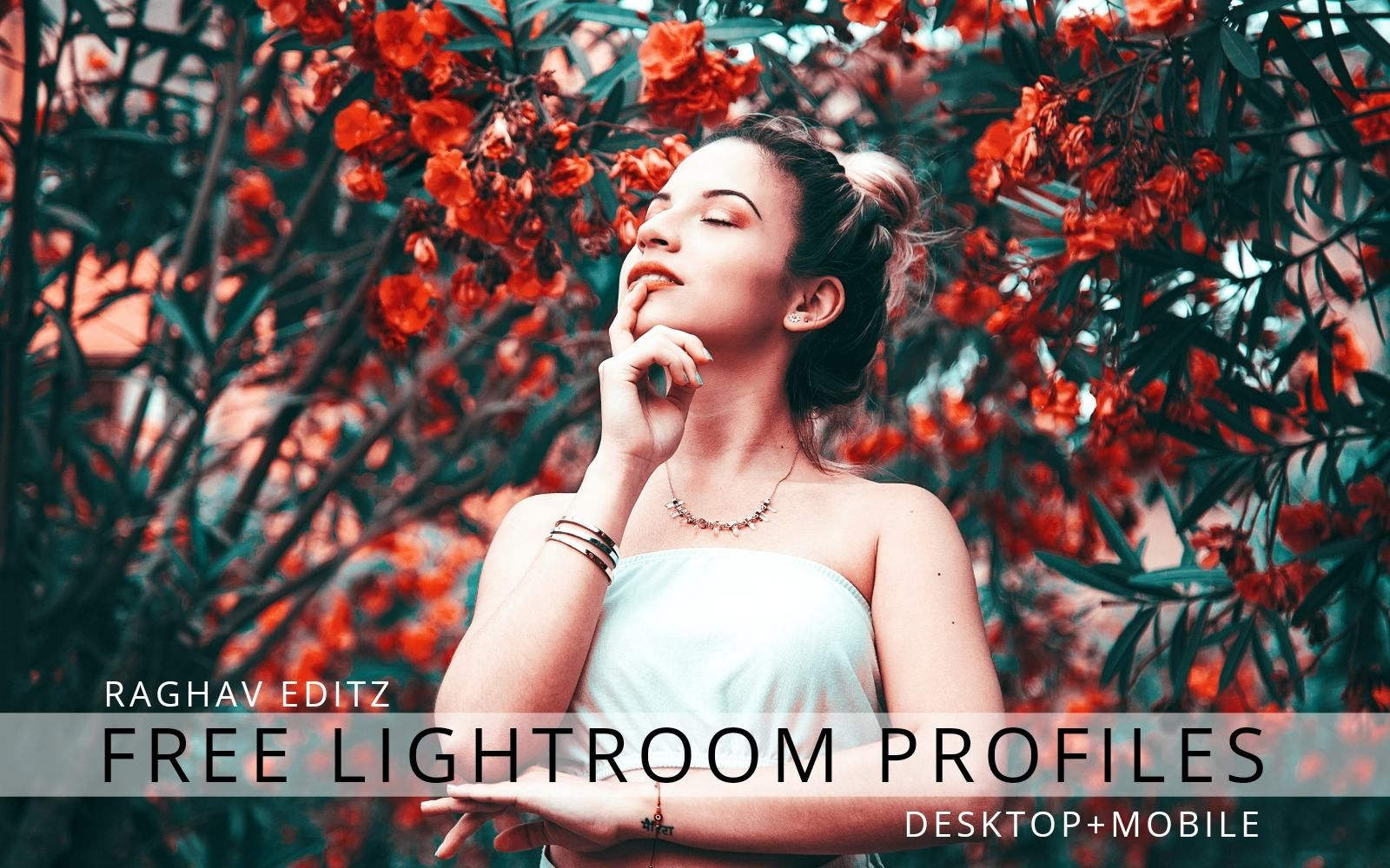Lightroom profiles download