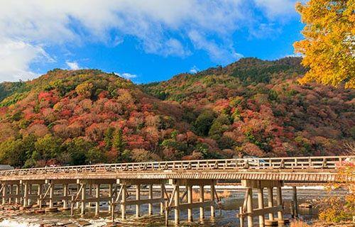新型肺炎の影響で観光客激減の京都嵐山今こそ観光に来て本来の嵐山の姿を味わえます