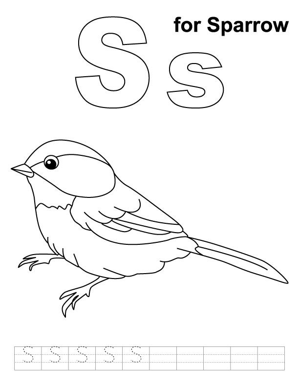 S For Sparrow Coloring Page With Handwriting Practice Coloring