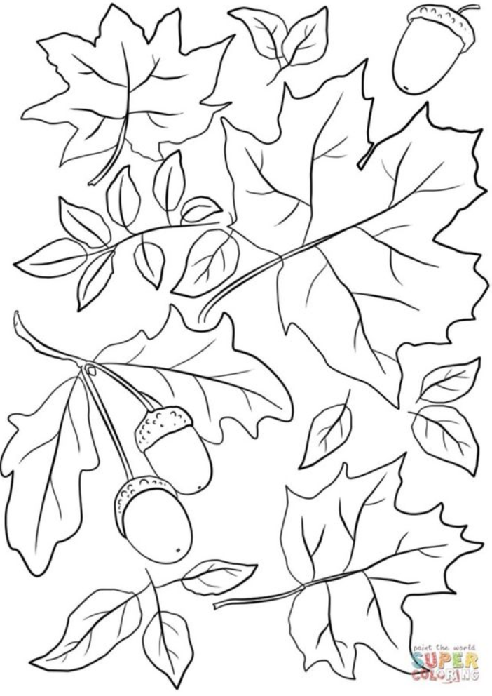 Printable Leaves Coloring Pages Leaf Coloring Pages Printable Leaves Coloring Page Fall L Free Printable Coloring Pages Leaf Coloring Page Fall Coloring Sheets