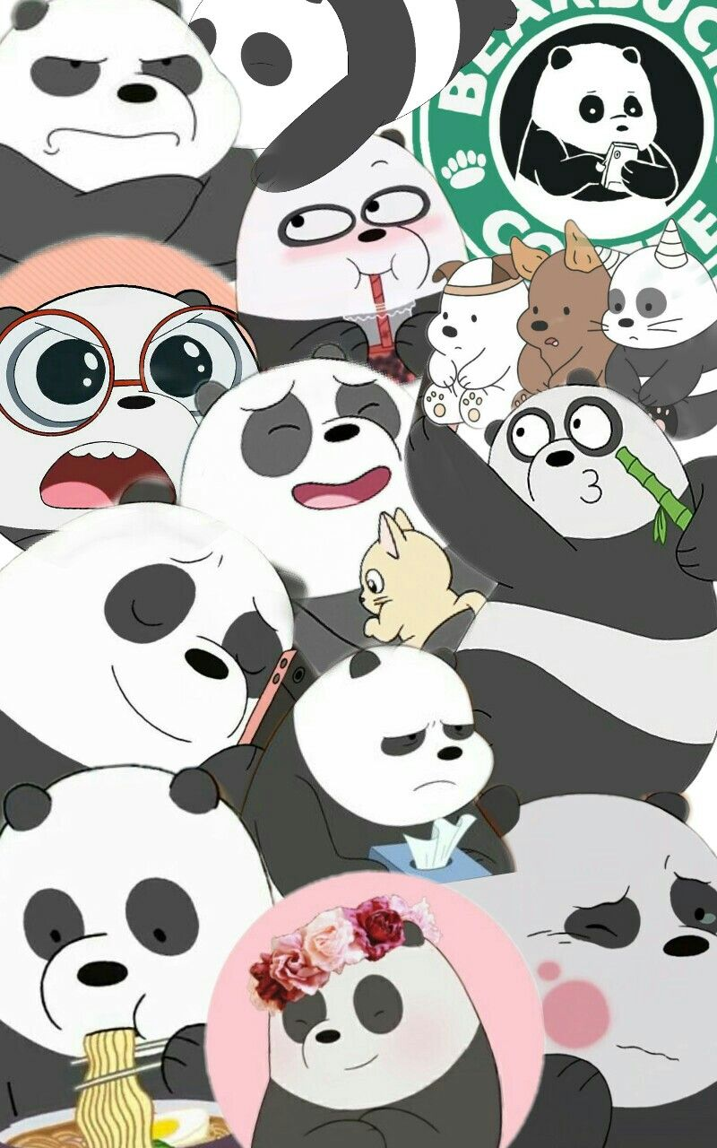 Wallpaper Collage Wearebears Panda Escandalosos Fondo