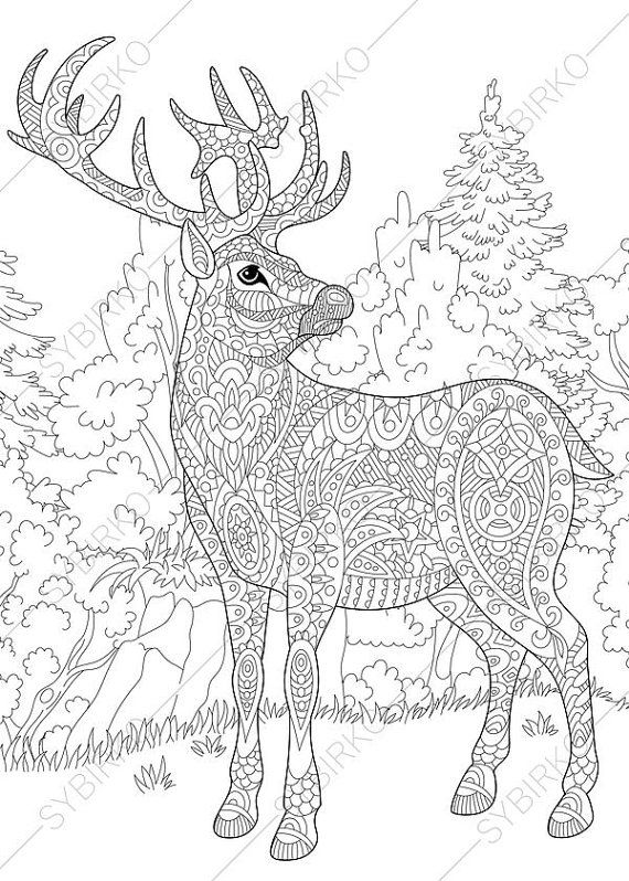 Coloring pages for adults. Forest Deer. Reindeer. Adult