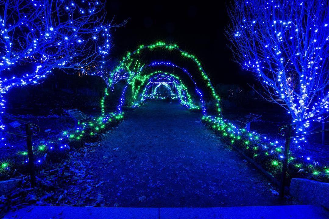 Botanical Gardens Boylston Ma Christmas Lights