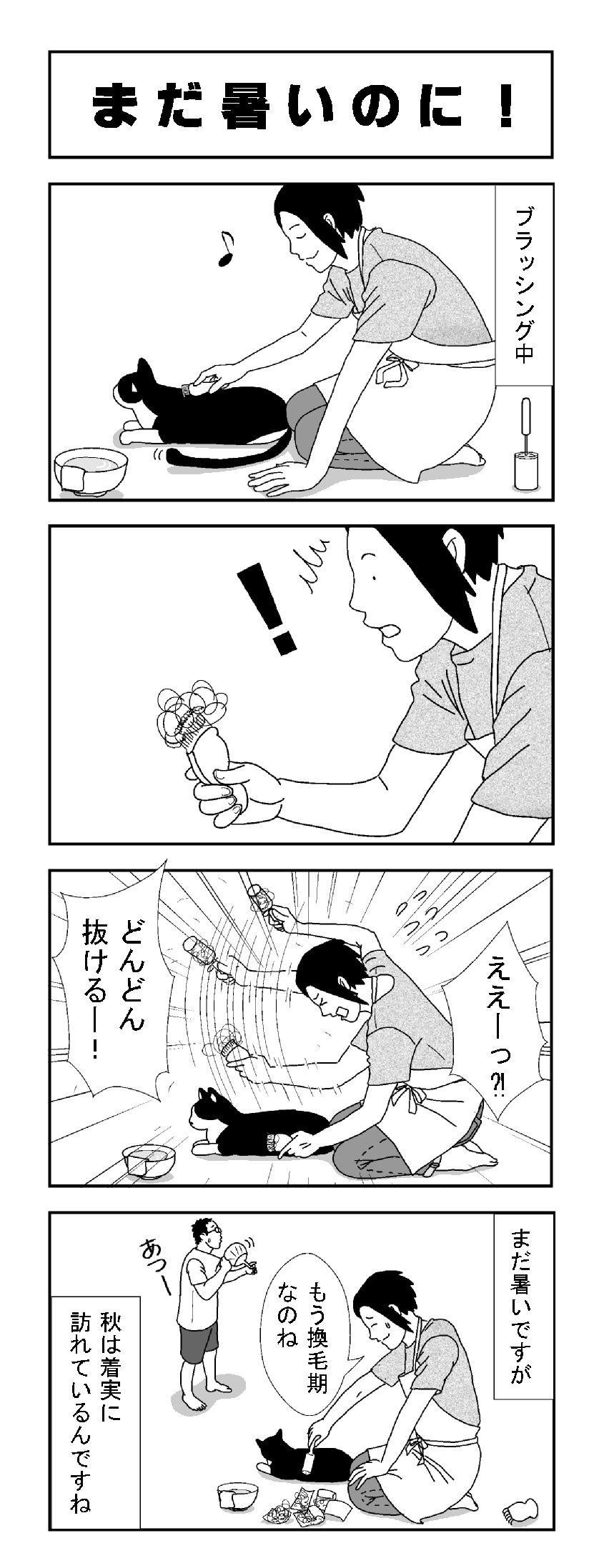 ねこ結び おしゃれまとめの人気アイデア Pinterest 小督 犬 猫 漫画 猫 漫画 米子
