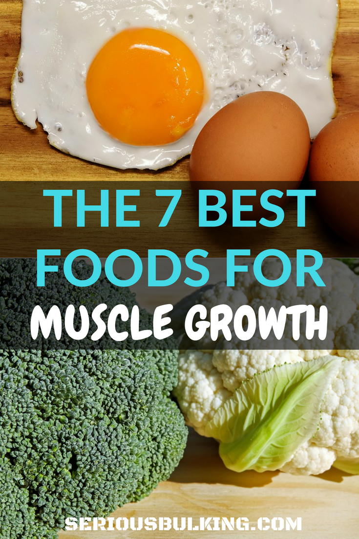 Learn about the 7 best foods to build muscle fast! Make sure you add these into your diet to gain size and mass! #musclebuilding #buildingmuscle #gainmuscle #musclegain #buildmusclefast #musclebuildingtips #musclebuildingnutrition