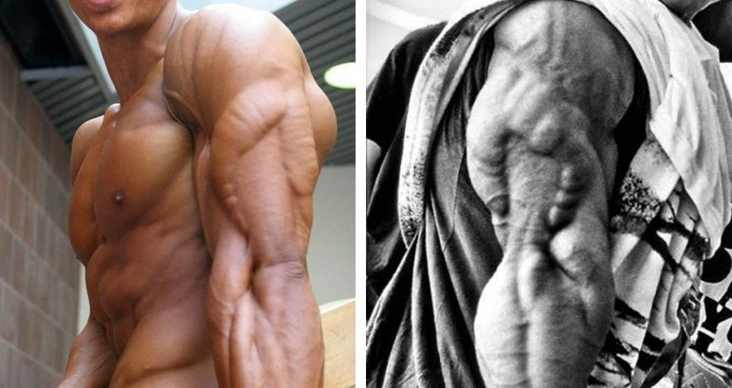 So You Want To Get Big Huge Muscular Arms Do Not Ignore Your