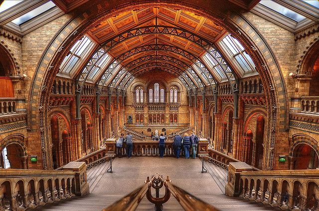 A view of the Natural History Museum, London, UK - a spectacular building.