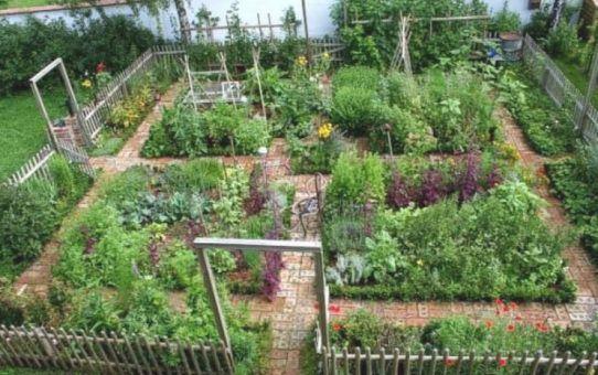 Bauerngarten Anlegen Beispiele