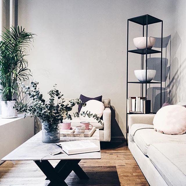 Canvas Home Store  Interior Design + Display Design