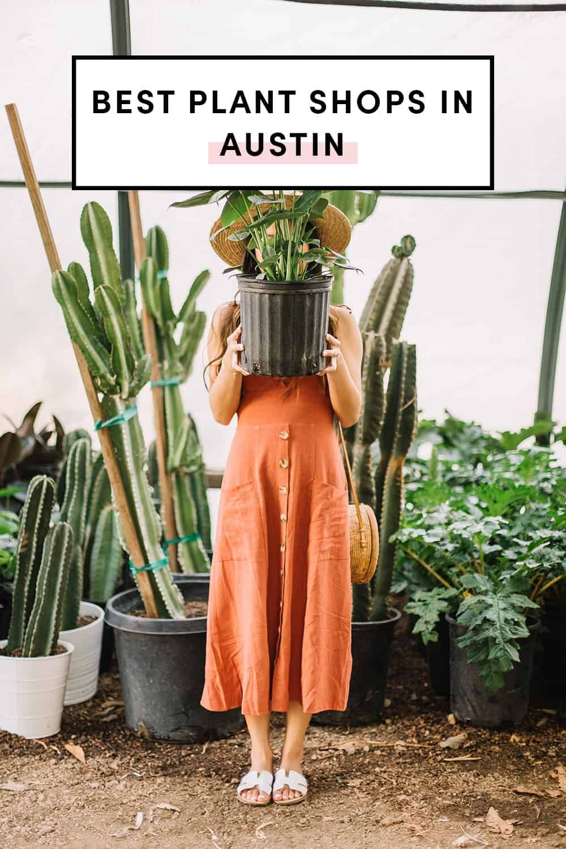 Best Plant Shops In Austin - A Taste of Koko in 2020 ...