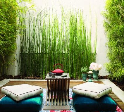 Jardin oriental equisetum separadores de ambiente - Jardines zen exteriores ...