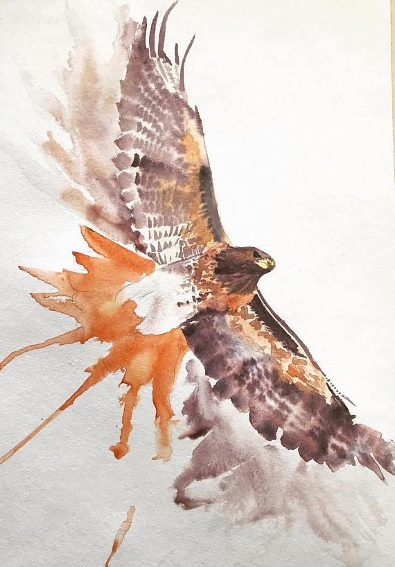 Red Tailed Hawk Watercolor Print | Living Room | Hawk ...