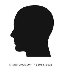 Human Head Images Stock Photos Vectors Shutterstock Human Head Shadow Silhouette Side View Of Face