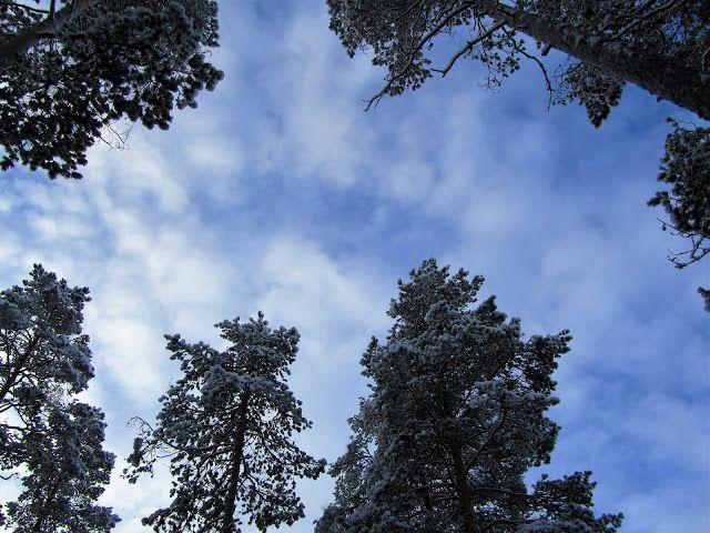 Blogi  OMAISAPU.fi      : Entisajan pyhät paikat