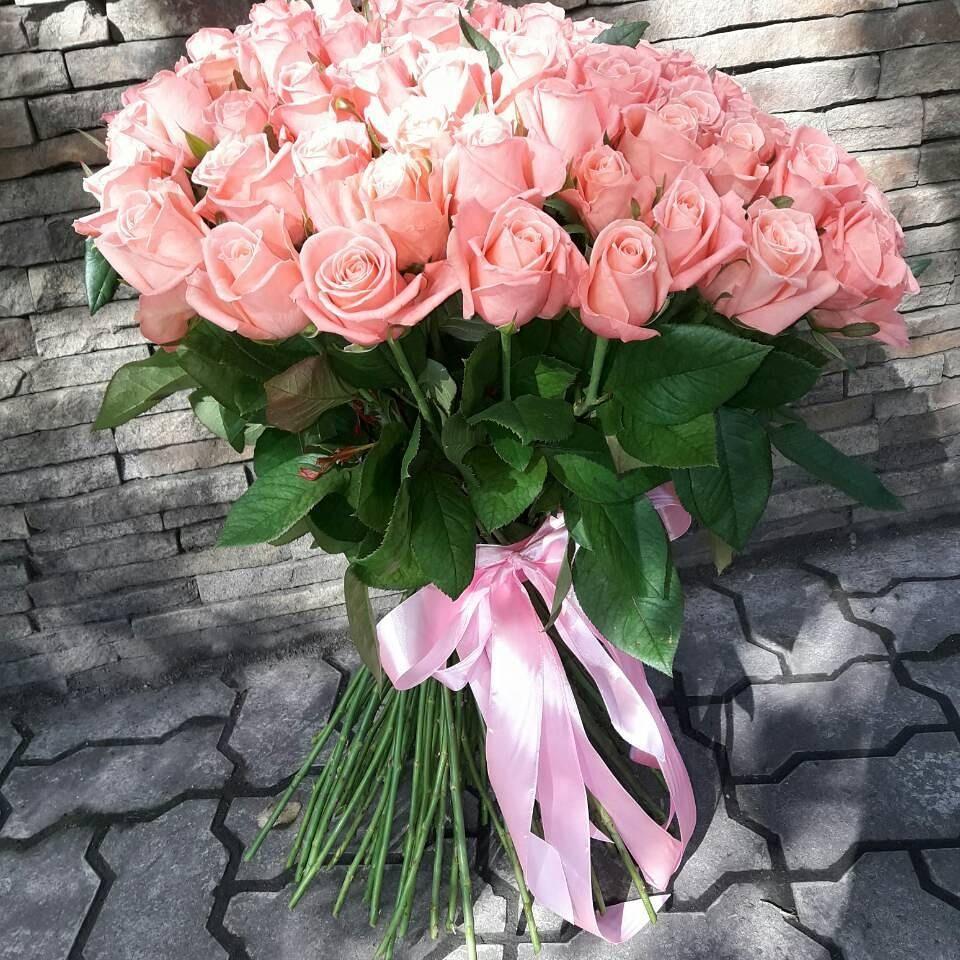 101 роза сорта Карина