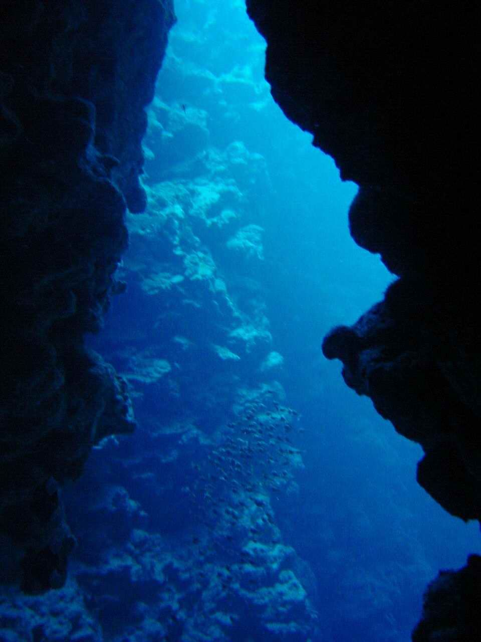Underwater canyon | Inspiration for the mermaid book ...