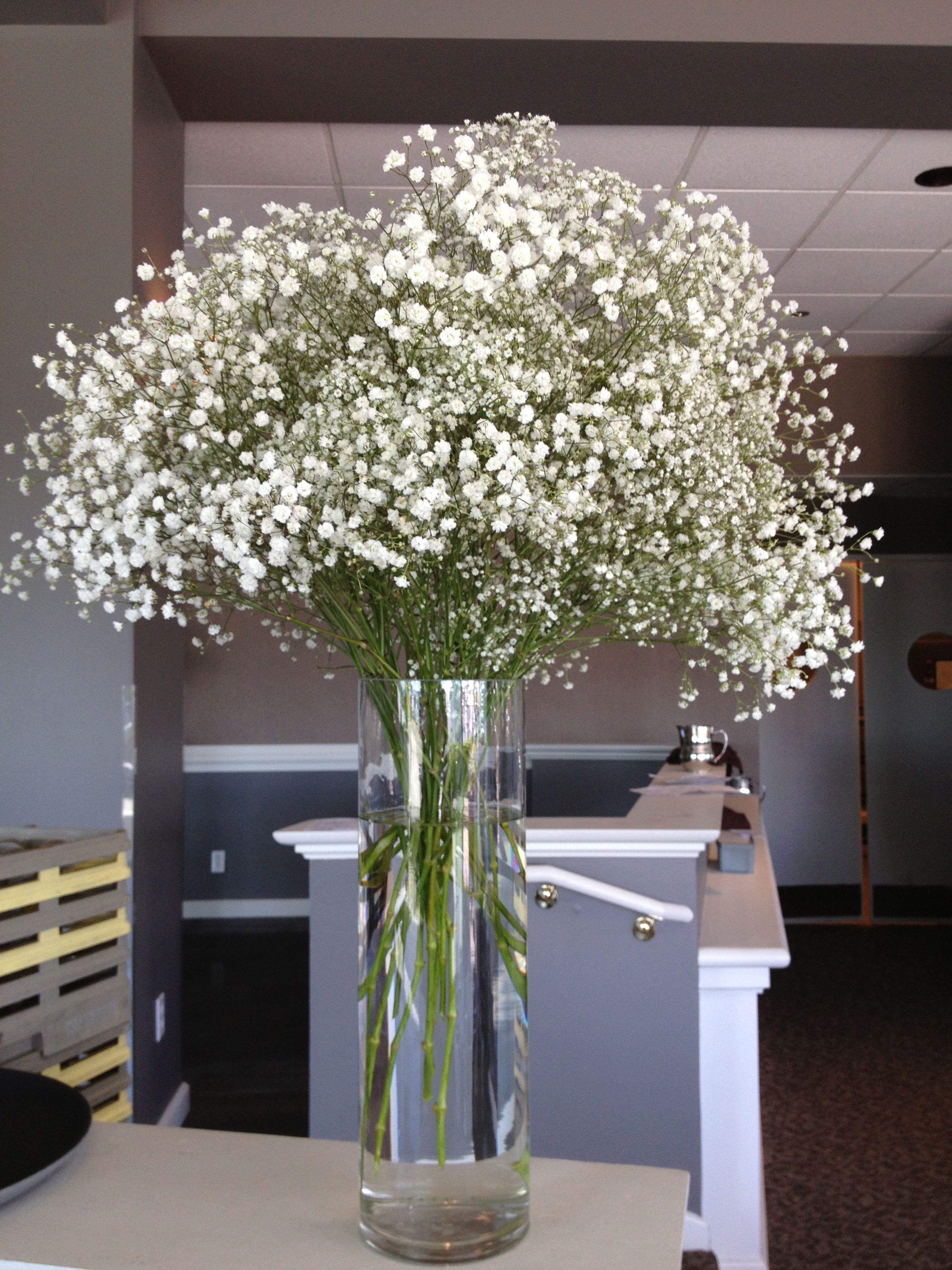 Baby S Breath In Cylinder Vase For Entry Of Marina Room Flower Centerpieces Wedding Cylinder Vase Centerpieces Wedding Vases