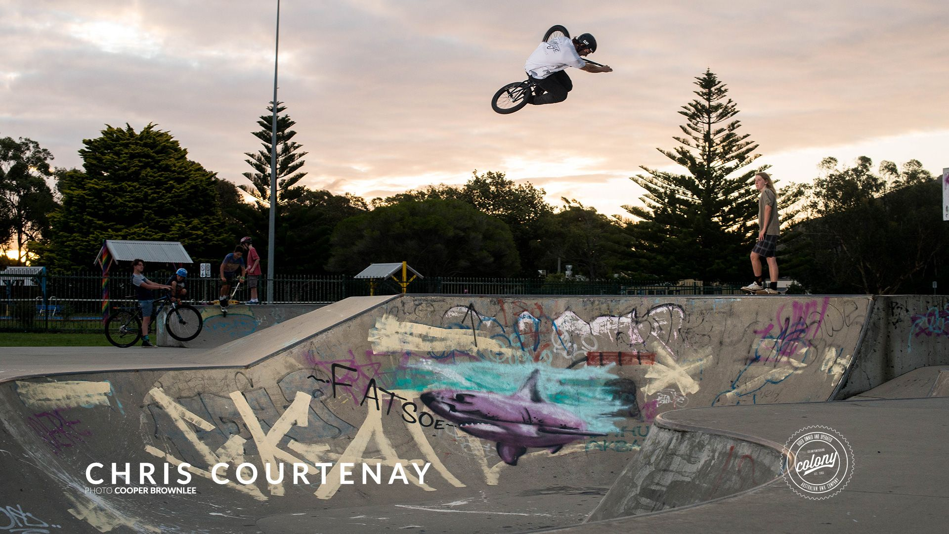 Colony bmx wallpapers archives colony bmx hd wallpapers colony bmx wallpapers archives colony bmx voltagebd Choice Image