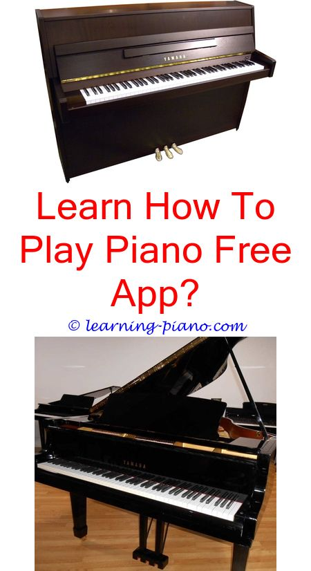 Learn How To Play The Piano Accordion