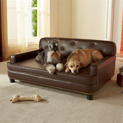 That s one way to keep them off the couch Library Pet Sofa by