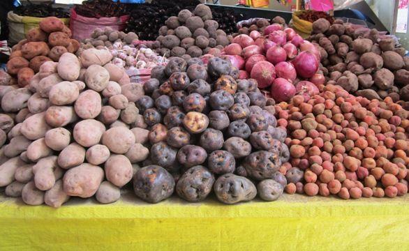 Variedad de papas - Visita al mercado tradicional San Camilo