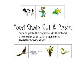 Food Chain Cut and Paste (Producers/Consumers) | 1st Grade Science ...
