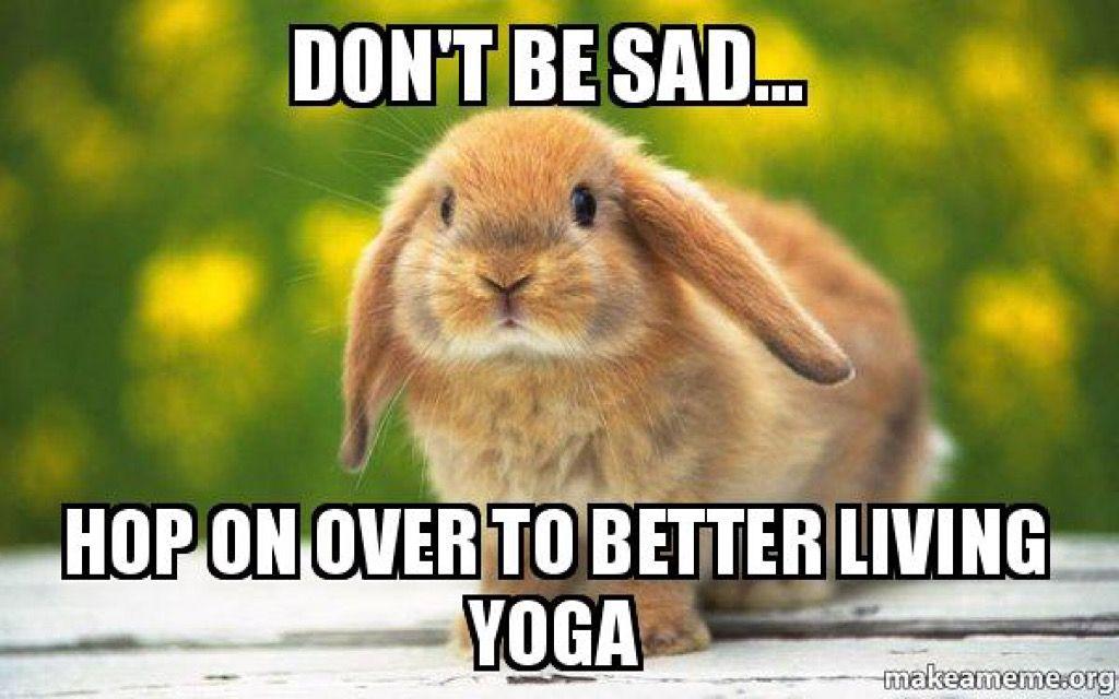Pin On Yoga Memes