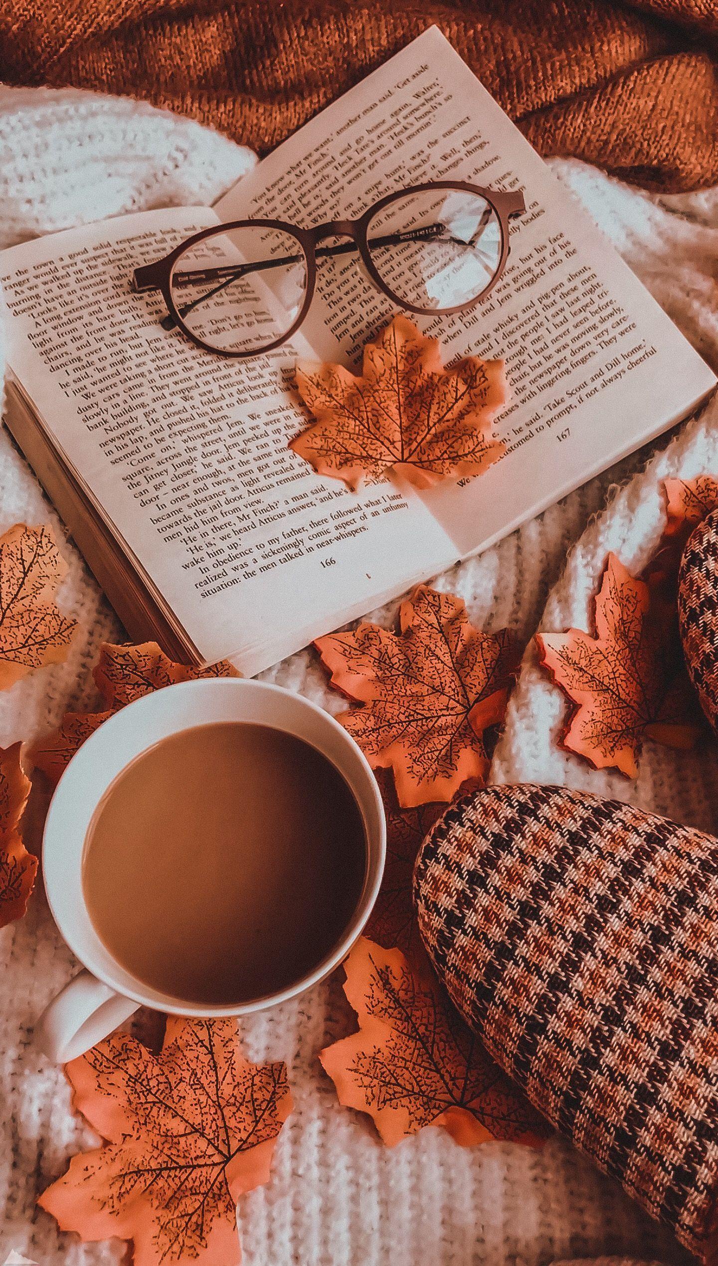 ☁︎·̩͙✧ ☁︎·̩͙✧ #autumnseason ☁︎·̩͙✧ ☁︎·̩͙✧ #autumnwallpaper