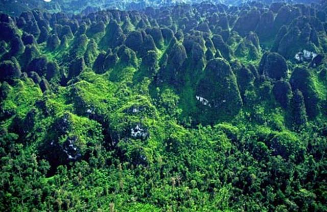 Enclavado en Indonesia, en la península de Mangkalihat, esta masa ondulante de picos y torres de piedra caliza y bosque selvático resulta abrumador desde el aire y aún más difícil resulta recorrerlo. Es misterioso pensar que sí fue habitado en tiempos pasados, y prueba de ello es que en el lugar hay infinidad de pinturas rupestres en sus cavernas. Más curioso es que al día de hoy en la zona no se encuentra ningún tipo de infraestructura