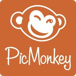Image result for picmonkey 250x250