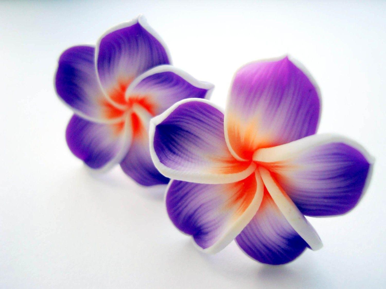 Purple hawaii flower clip on earrings extravagant kitchy fimo flower izmirmasajfo Choice Image