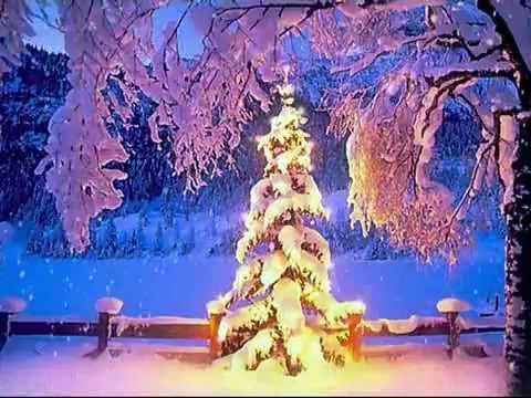 Celine Dion So This Is Christmas Youtube Vianoce Svietniky A Zima