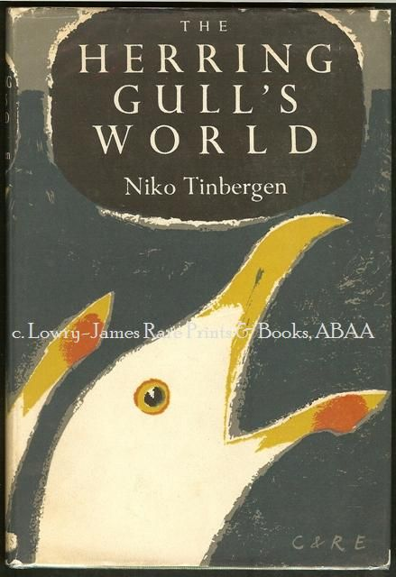 I love the illustration of a gull on this book cover.