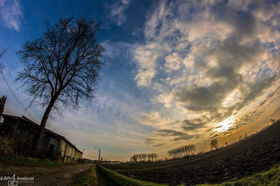 Il cielo in uno sguardo! Pic: Diletta Bonizzoni. #Lomellina #turismo #natura #campagna #relax #Pavia